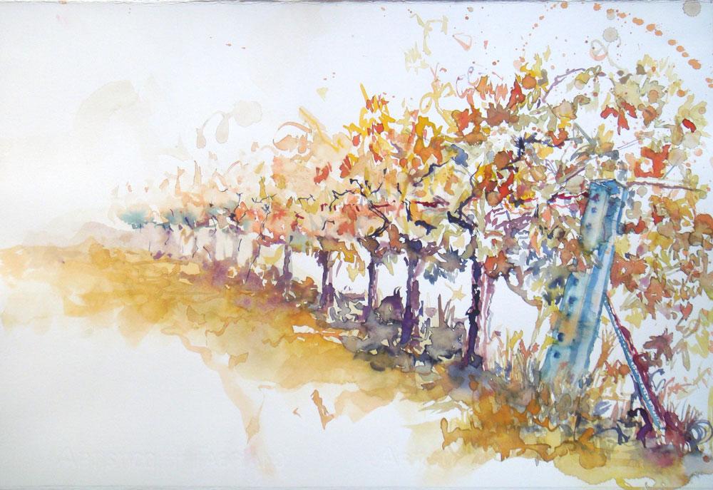 Weinberg, Weinstöcke, Reihe